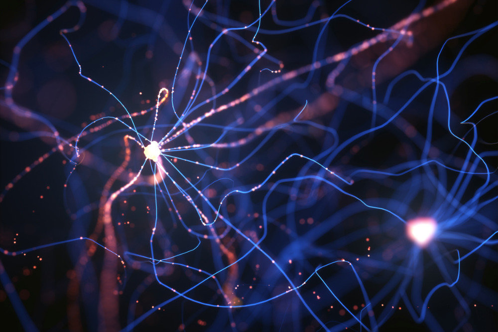 neurons-electrical-pulses-picture-id941148498_d_850